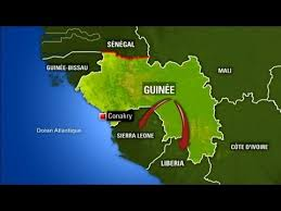 Présence du virus Ebola en Guinee