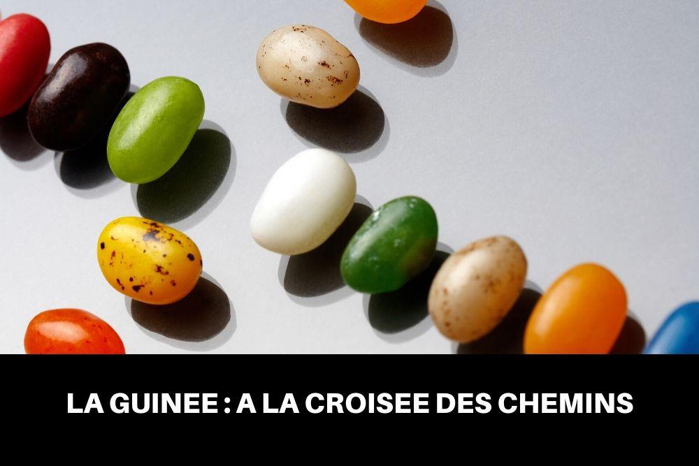 LA GUINÉEÀ LA CROISÉE DES CHEMINS